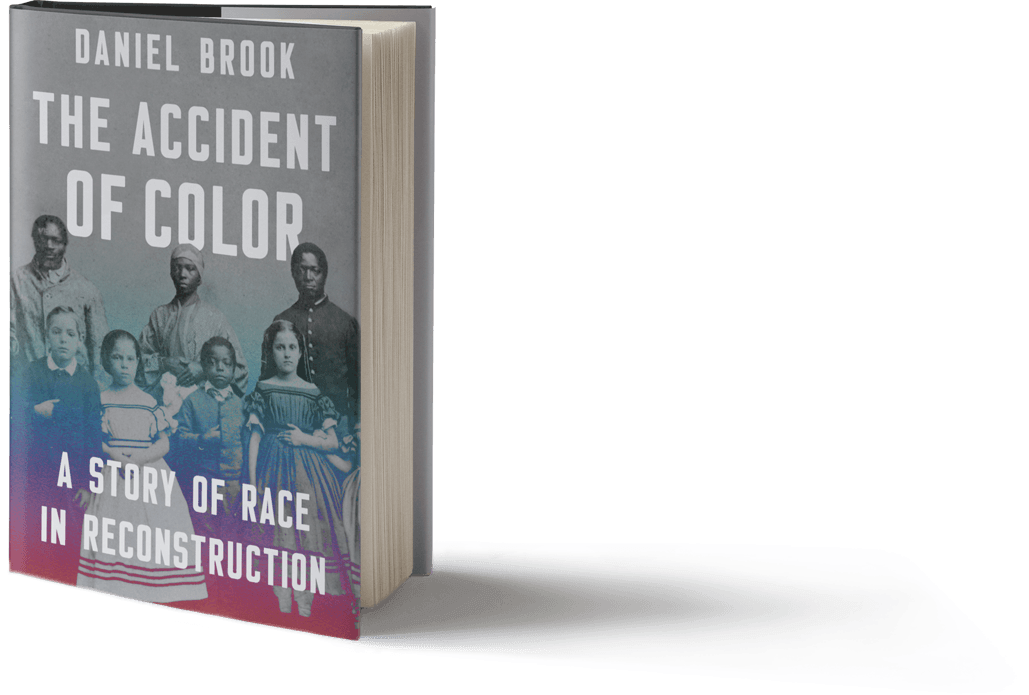 The Accident Of Color By Daniel Brook Sm